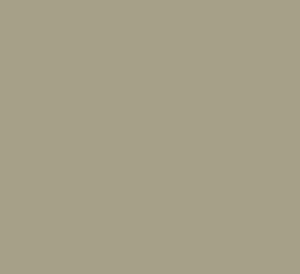 Google Parnter